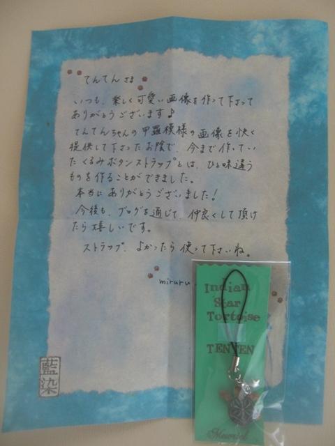 003.JPG