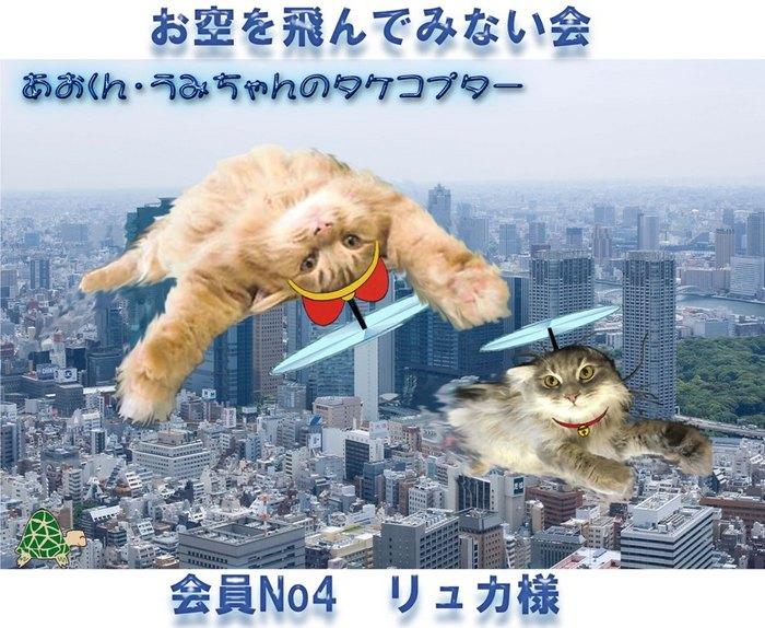 東京大.jpg
